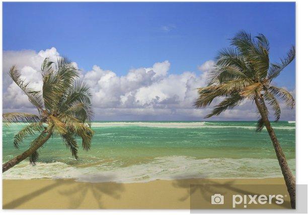 Poster Palmiers suspendue au-dessus d'une plage de sable blanc - Thèmes