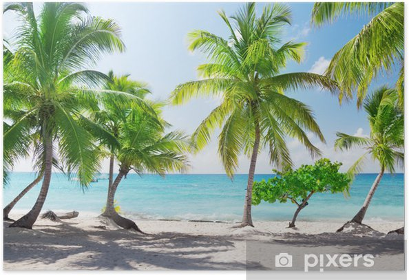 Paradise island in the Dominican Republic Poster - Themes