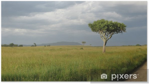 Poster Parc national de la Tanzanie - Merveilles naturelles