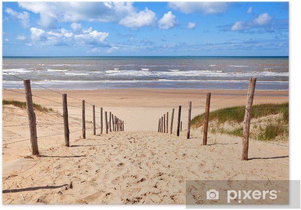 path to sandy beach by North sea Poster - Destinations