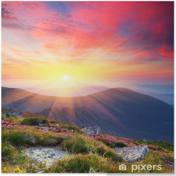 Poster Paysage d'été dans les montagnes avec le soleil - Thèmes