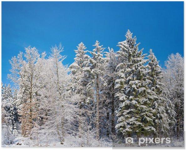 Poster Paysage de neige - Saisons