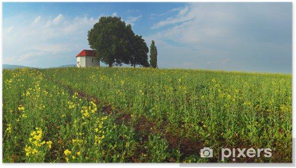 Poster Paysage de printemps avec un champ de fleurs jaunes. Lever du soleil - Europe