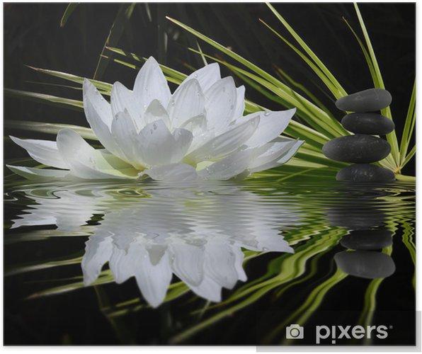 Póster Perfume zen - Temas