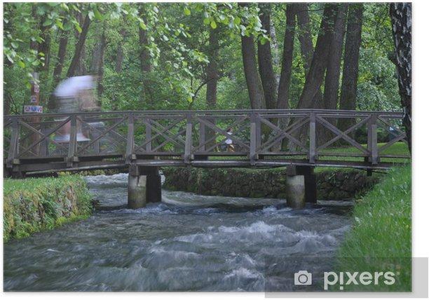 Poster Petit pont dans la forêt - Infrastructures