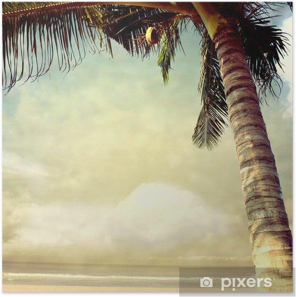 Poster Photobeach-17 - Thema's