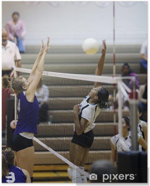 Poster Pic de volley-ball - Thèmes