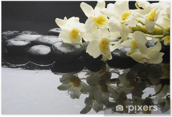Poster Pierres de thérapie avec de belles orchidées avec la réflexion - Merveilles naturelles