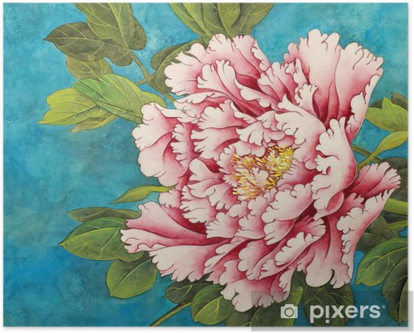 pink peony on a blue background Poster - Plants and Flowers