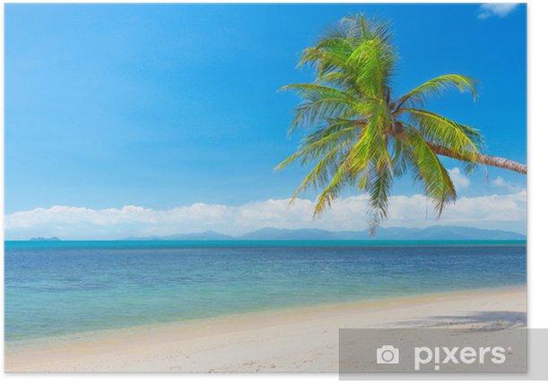 Poster Plage avec cocotier et de la mer. 16x9 rapport écran large aspect - Eau