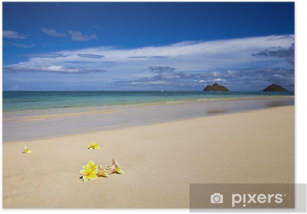 Poster Plage tropicale avec blosssoms de frangipanier, Hawaii - Thèmes