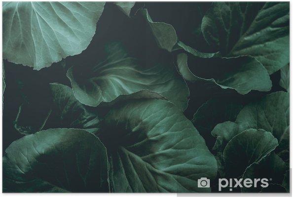 Poster Plant achtergrond - Grafische Bronnen