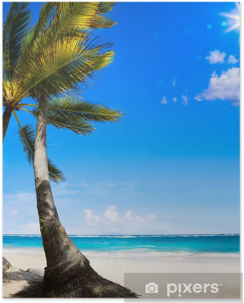 Póster Playa tropical sin tocar el arte del Caribe - Temas