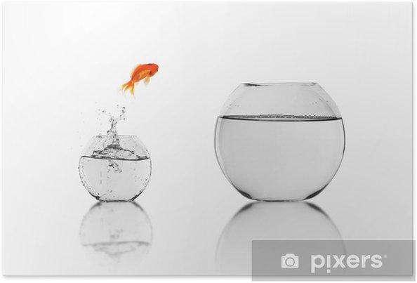Poster Poisson rouge dans un bocal à poissons - Animaux marins
