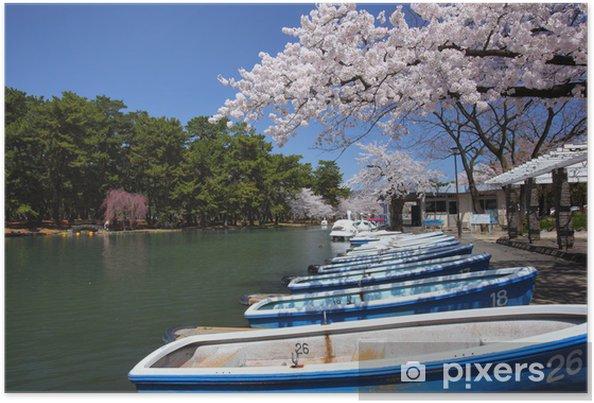Poster Pond et Sakura - Saisons