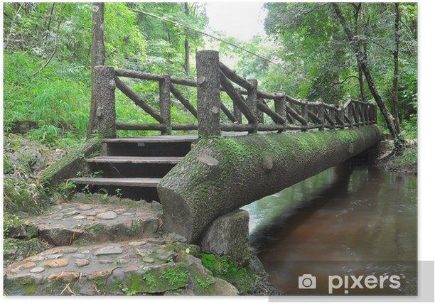 Poster Pont de bois sur la rivière - Saisons