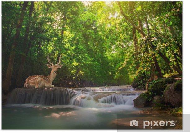 Poster Première levelof Erawan Waterfall - Thèmes