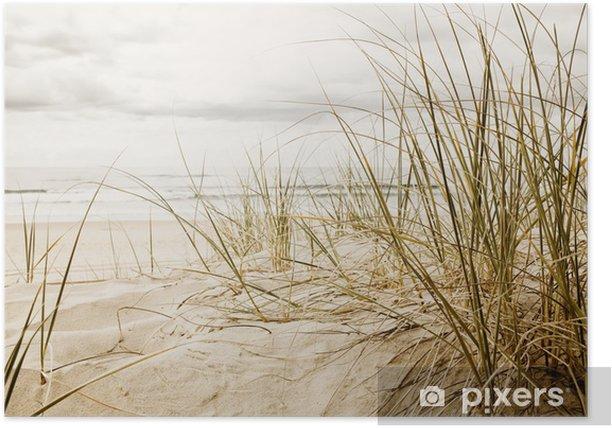 Póster Primer plano de una hierba alta en una playa durante la temporada nublado - Destinos