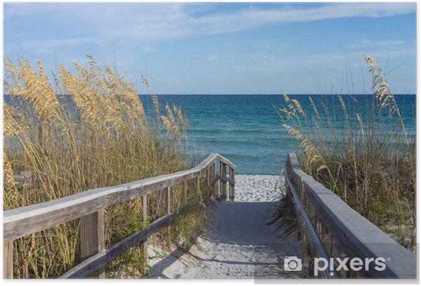 Poster Promenade sur la plage avec des dunes et de l'avoine de sable - Thèmes