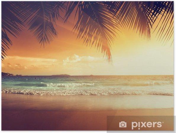 Póster Puesta de sol en la playa del mar Caribe - Palmeras