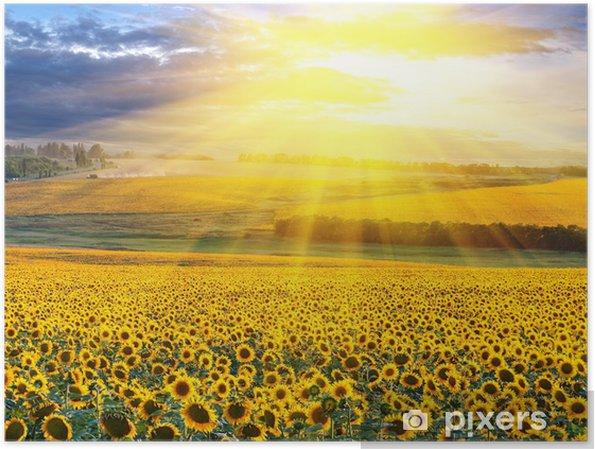 Póster Puesta del sol sobre el campo - Destinos