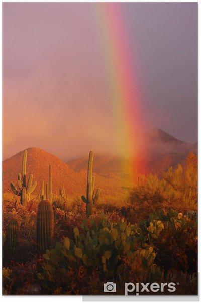 Poster Rainbow solnedgång på Saguaro National Park, Arizona, USA - Nordamerika