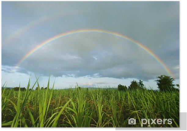 rainbow Poster - Skies