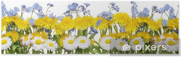 Real Spring Flowers Border Poster Pixers We Live To Change