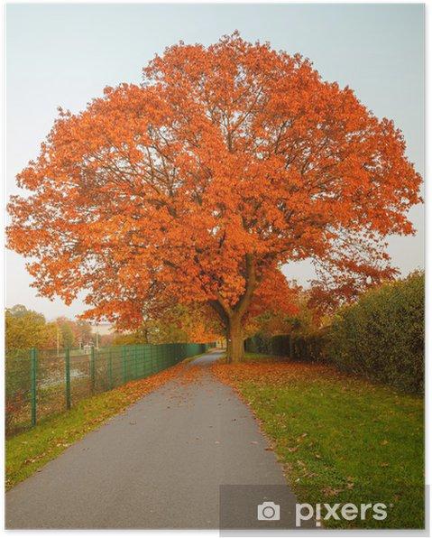 Poster Red automne chêne - Thèmes