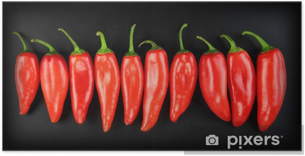 Red Hot Chili Pepper Poster Pixers We Live To Change