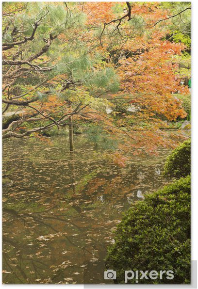 Red maples planted on the shore and reflection. Poster - Countryside