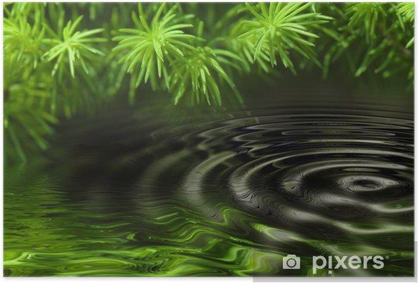 Póster Reflexión de los bosques en el agua - Belleza y cuidado personal
