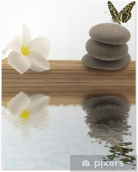 Poster Relaxation concept; papillon, frangipanier, galets - Fleurs