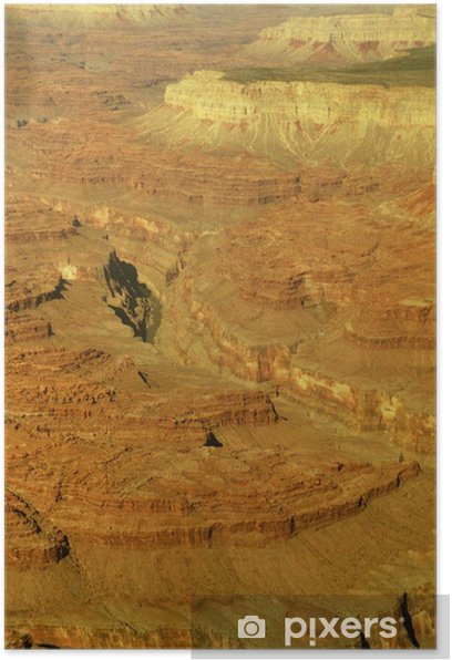 Poster Reptiles Merika Arizona canyon - Amérique