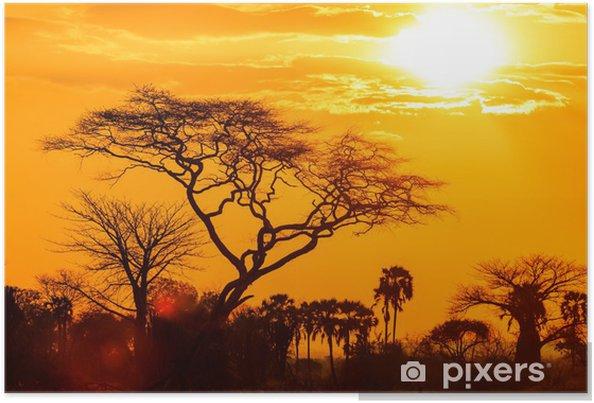 Póster Resplandor naranja de un atardecer africano - Temas