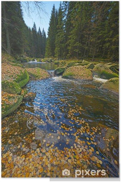 Poster Rivière avec le feuillage jaune d'automne - Thèmes