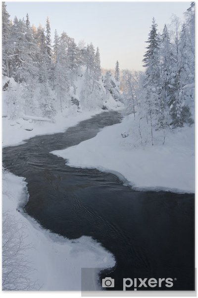 Poster Rivière dans la forêt enneigée à l'hiver - Saisons