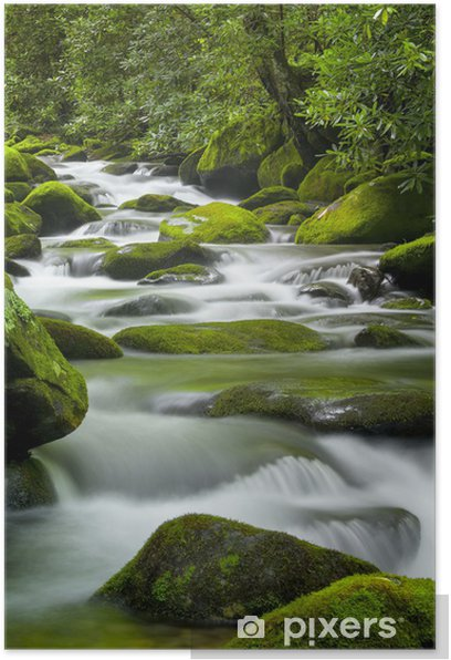 Roaring Fork Creek, Smoky Mountains National Park Poster - Water