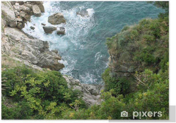 Rock and trees above the sea, Dubrovnik Poster - Europe