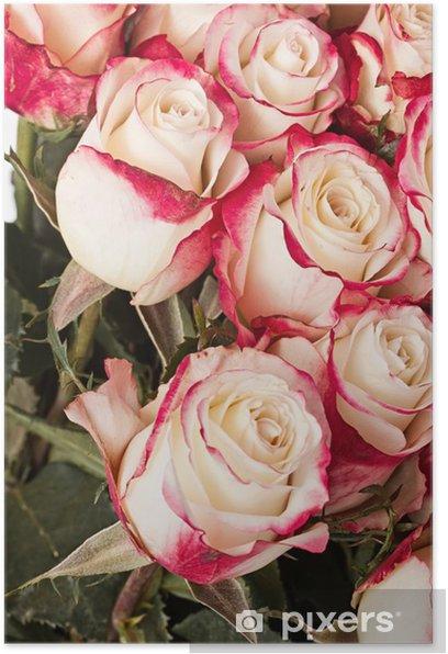 Póster Rosas - Celebraciones