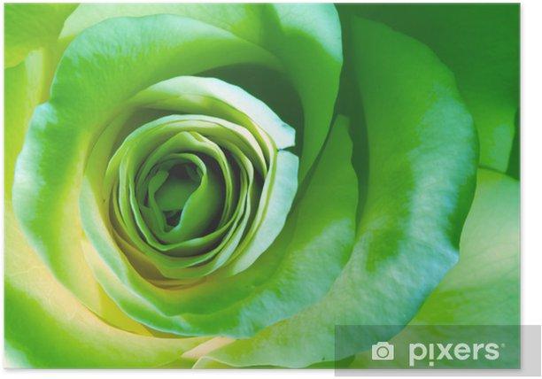 poster rose verte pixers nous vivons pour changer poster rose verte