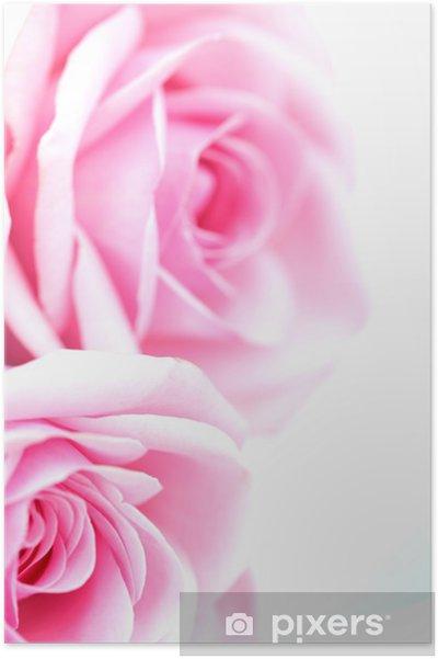 Poster Rose - Thèmes