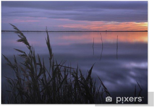 Roseaux à la tombée de la nuit sur le bassin d'arcachon Poster - Holidays