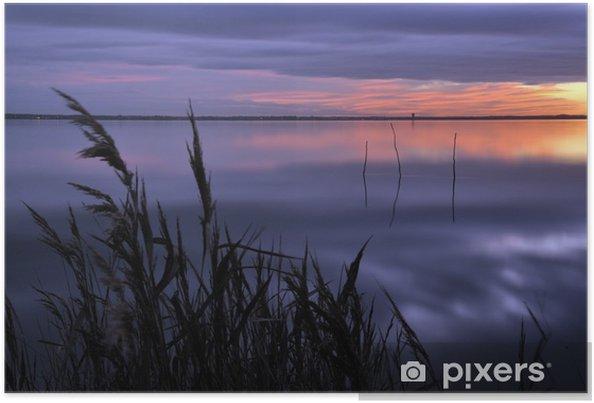 Poster Roseaux à la tombée de la nuit sur le bassin d'arcachon - Vacances