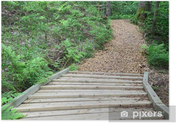 Poster Route de bois dans la forêt. Sigulda. - Vacances