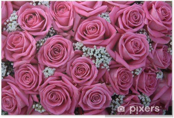 Poster Roze rozen en witte gipskruid - Thema's