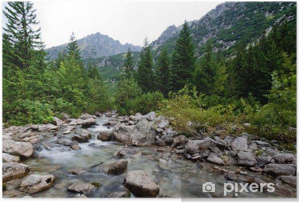 Poster Ruisseau de montagne - Europe