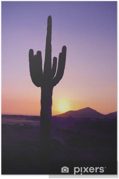 Poster Saguarokaktus på solnedgången - Öknar