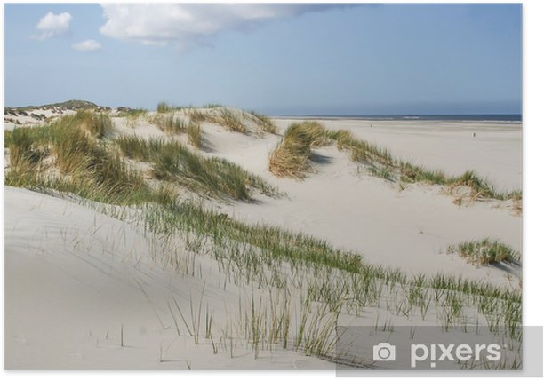 Sand dunes at the coast of the Netherlands Poster - Themes