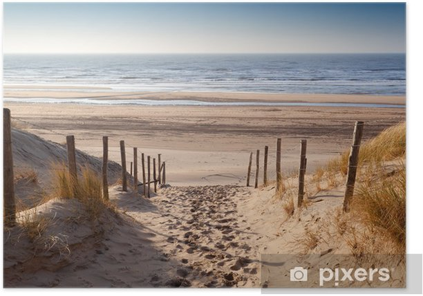 sand path to North sea at sunset Poster - iStaging